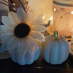 2 White Pumpkins!